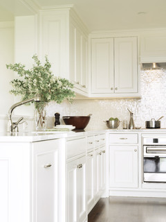 Back Bay Pied-A-Terre traditional-kitchen