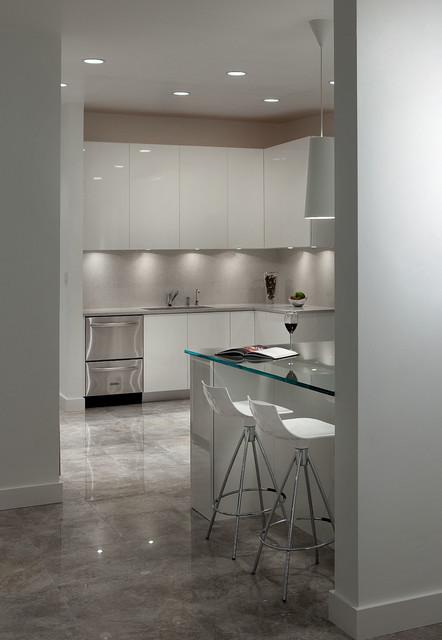Bahama Modern Kitchen Orlando By Dina Graham Design