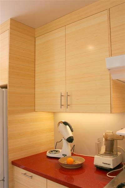 Bamboo Cabinetry modern-kitchen