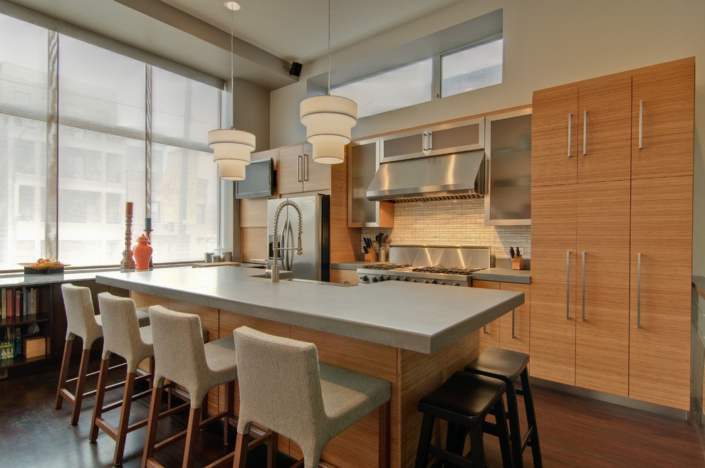 Example of a minimalist kitchen design in Chicago