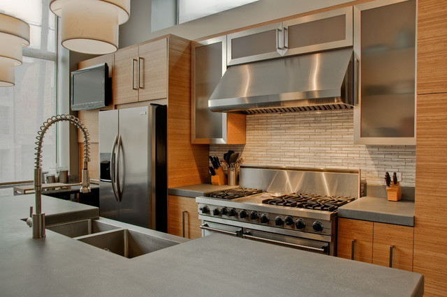 Bamboo Cabinets Modern Kitchen Chicago By Best