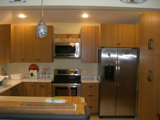 Bamboo Kitchen Cabinets Modern Kitchen Seattle By