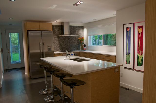 Barb Purdy - Purdy & Associates design modern-kitchen