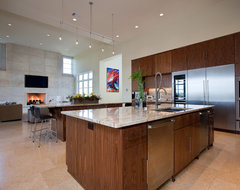 Barton Creek Residence contemporary kitchen