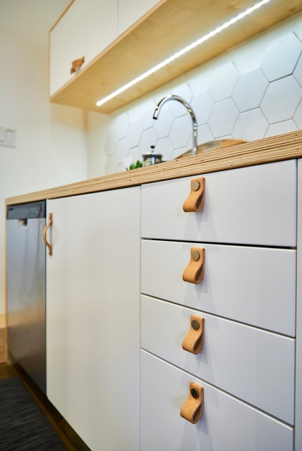 This is an example of a scandinavian kitchen in Toronto.