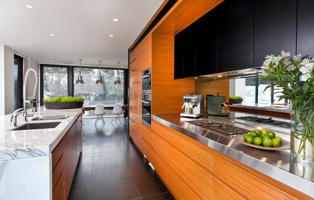 Bayview modern kitchen sydney by art of kitchens for New kitchen designs sydney