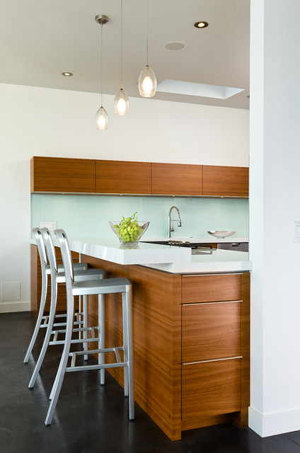 Beach Kitchen contemporary-kitchen