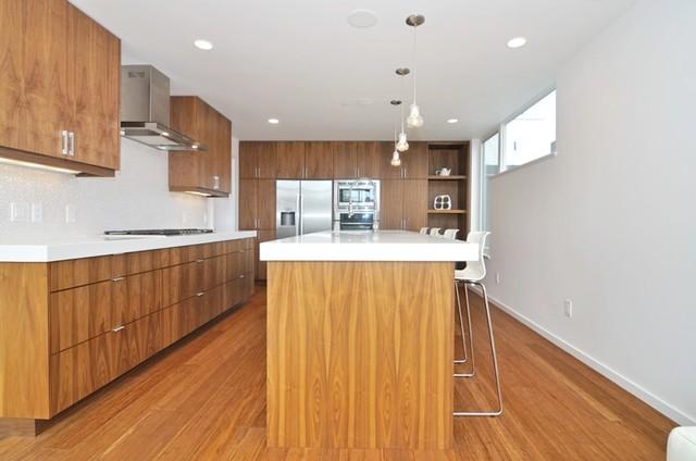 Beachaus II contemporary-kitchen