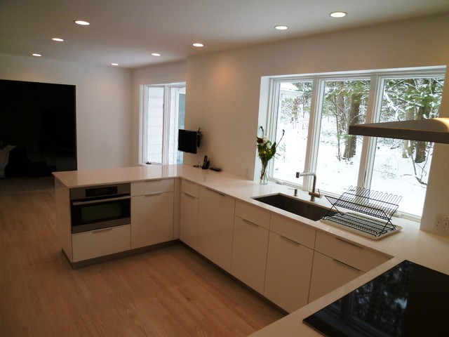 houzz modern kitchen cabinets beautiful white kitchen modern kitchen boston by 16636