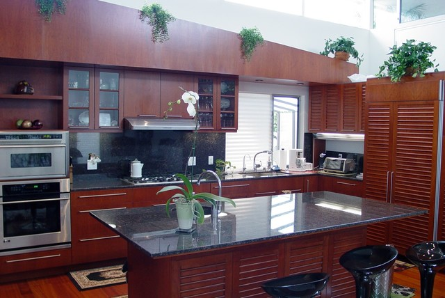Becker Residence contemporary-kitchen