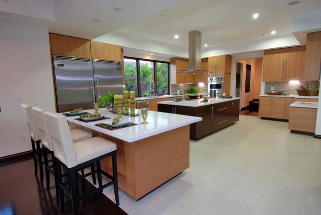 Kitchen - modern kitchen idea in Los Angeles