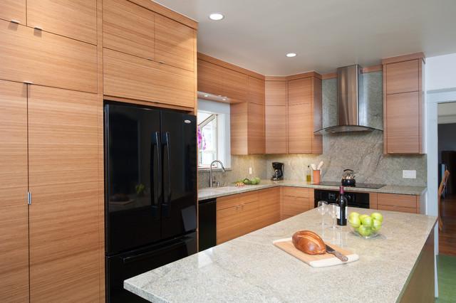 Berkeley kitchen contemporary kitchen san francisco for Kitchen cabinets berkeley