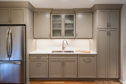 What Color Are Those Cabinets? Are They Showplace Light Mocha?