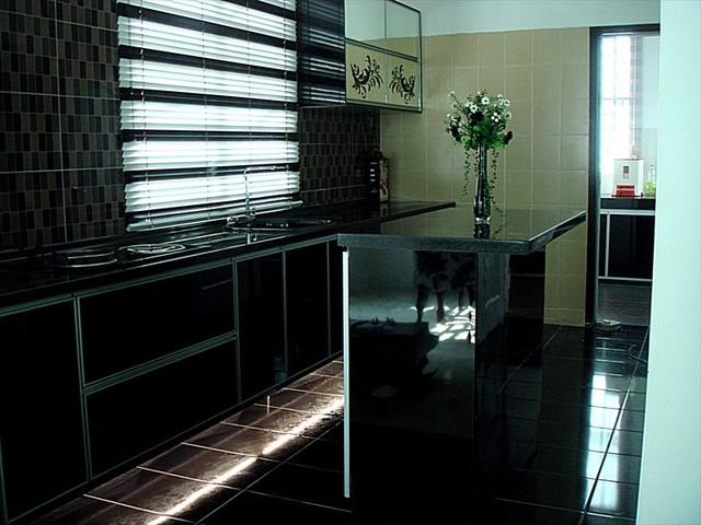 Black Color Kitchen Cabinet modern-kitchen