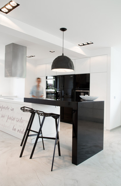 Black or White... modern-kitchen