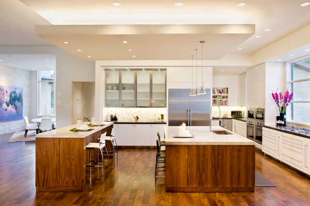 Blanco House contemporary-kitchen