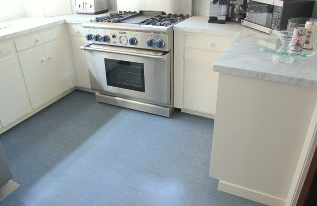 Blue Color Marmoleum Flooring Contemporary Kitchen