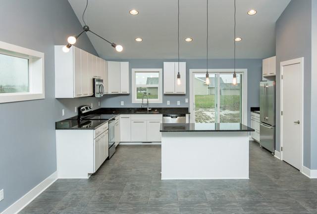 Branson Contemporary contemporary-kitchen