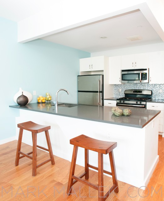 brooklyn one bedroom apartment contemporary kitchen new york