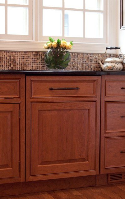 Brown/Nilon Dishwasher Panel - Traditional - Kitchen - dc metro - by Cameo Kitchens, Inc.