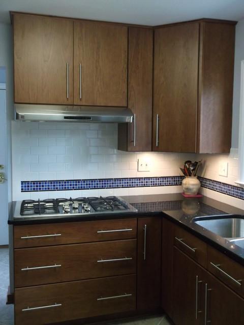 Buttiglieri Kitchen Remodel contemporary-kitchen