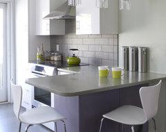 by Jodi Feinhor-Dennis contemporary-kitchen