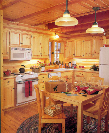 Cabin traditional-kitchen