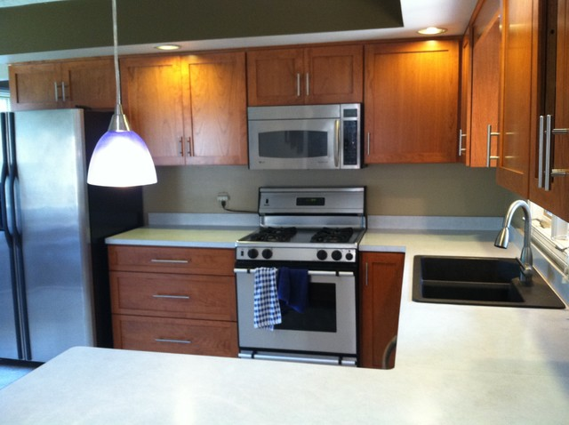 Cabinet Refacing - Modern - Kitchen - Denver - by R&R Cabinetry, LLC