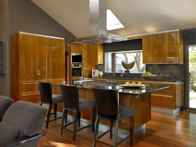 Cabinetry by Snaidero Contemporary Kitchen Chicago by Studio