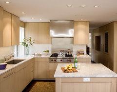 Cambridge Modern Kitchen modern-kitchen