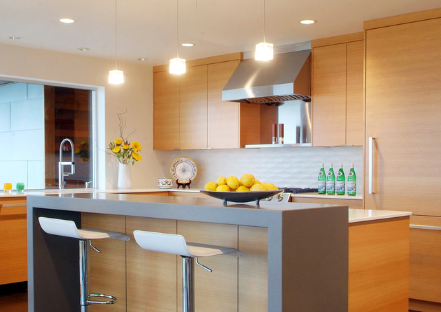 Campbell Residence contemporary-kitchen