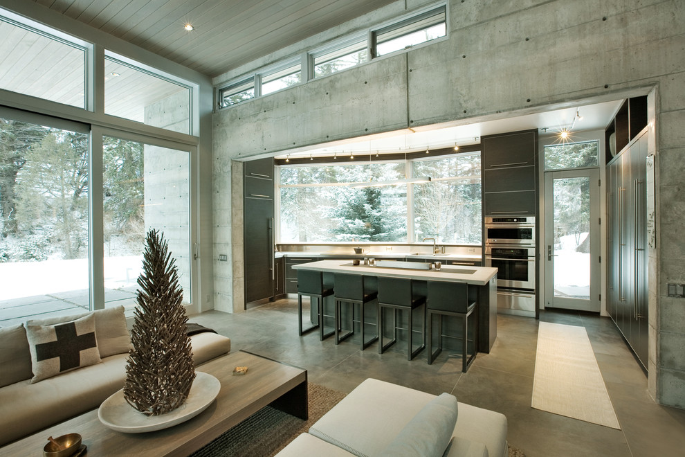 Open concept kitchen - modern open concept kitchen idea in Denver with flat-panel cabinets, gray cabinets and stainless steel appliances