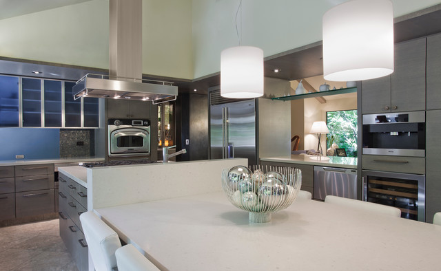 Carmichael Residence contemporary-kitchen