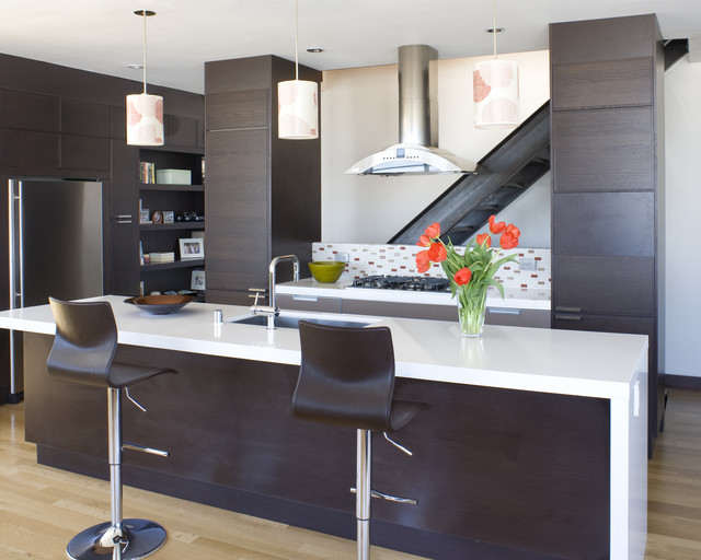 Carolina St contemporary-kitchen