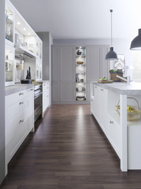 CARRE-FS traditional-kitchen
