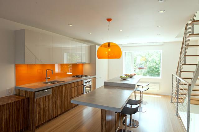 Carroll Gardens Duplex contemporary-kitchen