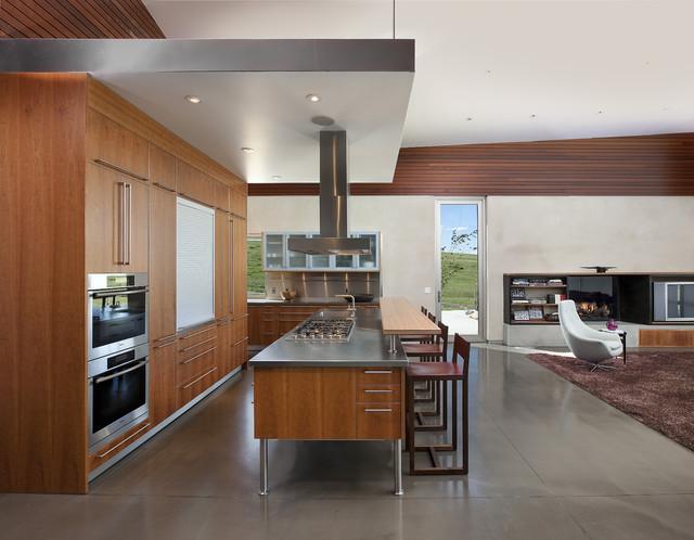 Krmpotich Residence modern-kitchen