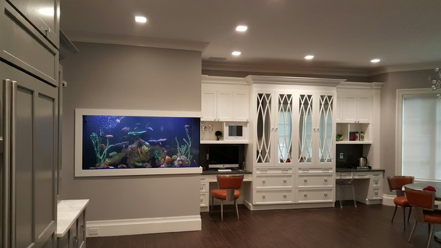 central new jersey kitchen aquarium contemporary kitchen