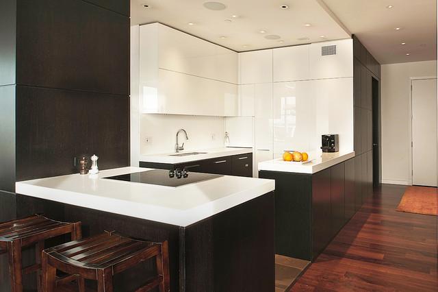 Central Park South Apartment Kitchenmodern Kitchen New York