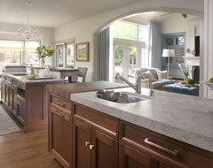 Cherry Hills Remodel contemporary kitchen