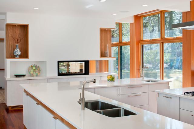 Chestnut Hill Addition contemporary-kitchen