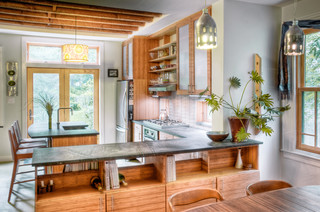 Chestnut Hill kitchen contemporary-kitchen