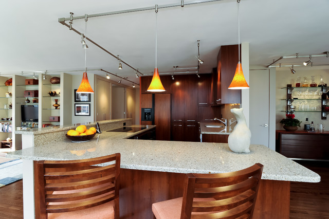 Chicago condo Gold Coast Contemporary Kitchen