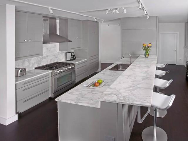 Chicago contemporary kitchen remodel contemporary kitchen
