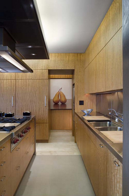 Chicago Lake Shore Drive Apartment Contemporary Kitchen Chicago By Wheeler Kearns Architects