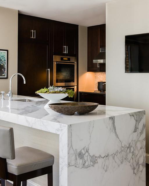 Back Bay Residence contemporary-kitchen