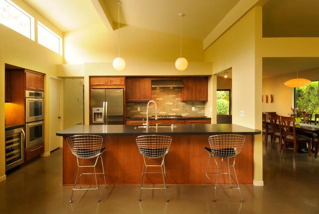 Classic Contemporary Kitchen contemporary-kitchen