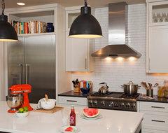 Classic Contemporary contemporary-kitchen
