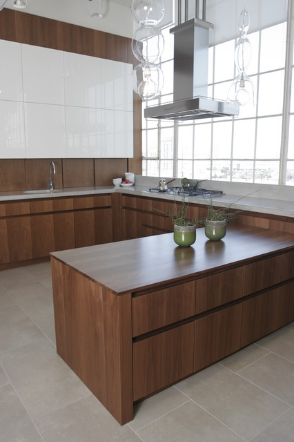 Classic III Walnut Detail Modern Kitchen