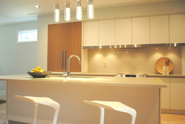 Close Up contemporary-kitchen